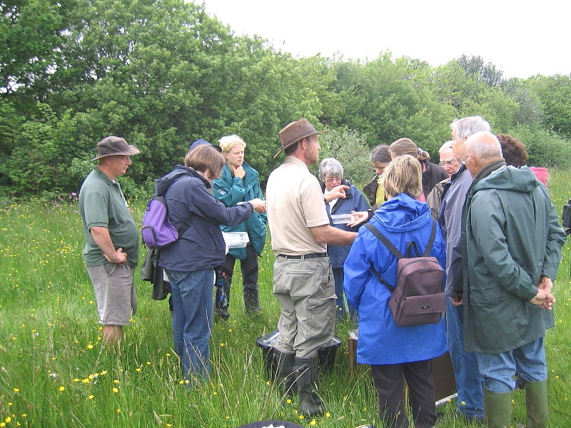 Devon Wildlife Trust public event at Volehouse Moor
