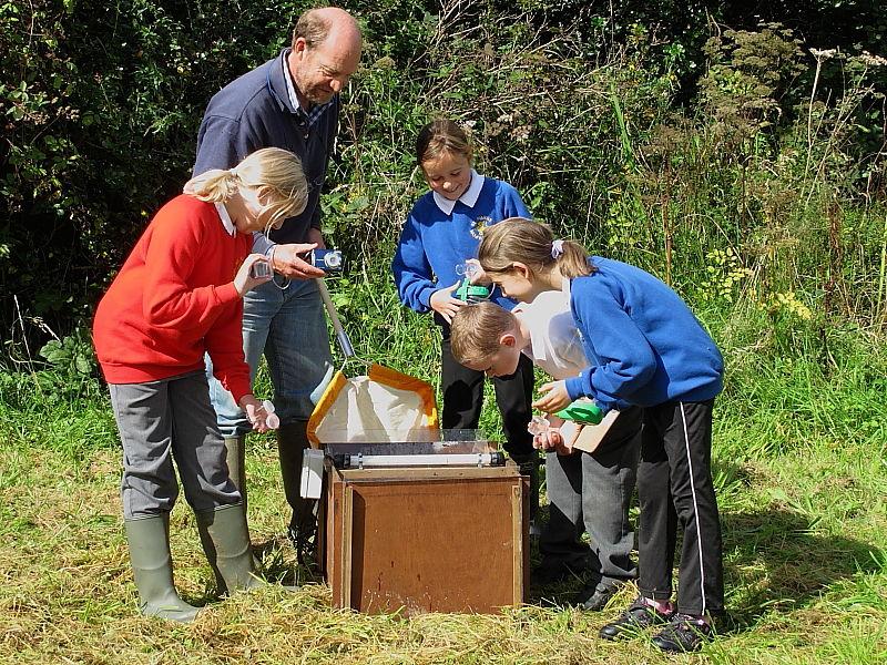 Garden Moth Scheme recording