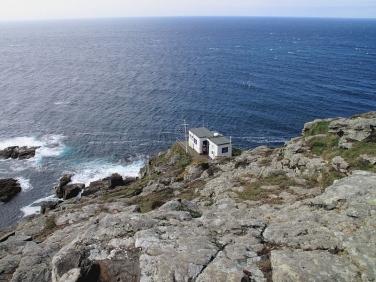Cape cornwall sea watching