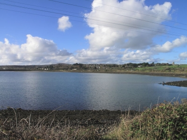 Carnsew Basin, Hayle in November