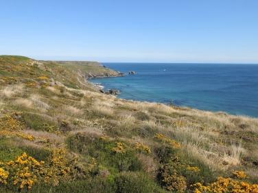 Kennack Sands eastern cliff, The Lizard.Cornwall