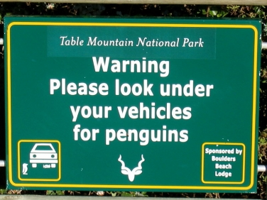 African Penguin warning sign at Boulders Beach, Simon's Town, South Africa