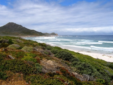 Cape of Good Hope Reserve - looking over fynbos and beaches towards Cape Point