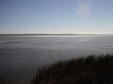 Low Water from the Geelbek Hide, Langebaan Lagoon, West Coast National Park, South Africa