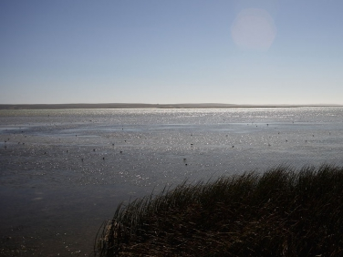 Low Water from the Geelbek Hide, Langebaan Lagoon, West Coast National Park, South Africa