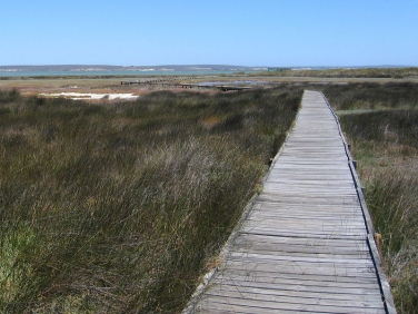 Geelbek Bird Hide walkway, Langebaan Lagoon, West Coast National Park, South Africa