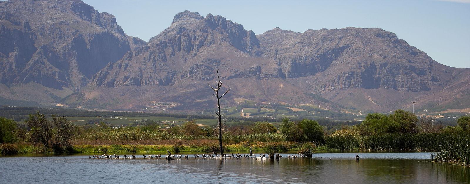 Paarl Bird Sanctuary near Cape Town, South Africa © Steve Ogden