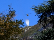 fire-fighting-with-helecopters-on-the-slopes-of-table-mountain-cape-town-south-africa-3889