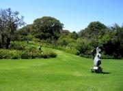 Lawns with sculptures, Kirstenbosch National Botanical Gardens, Cape Town, South Africa