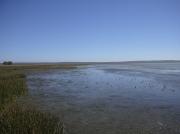 Langebaan Lagoon, West Coast National Park, South Africa at low tide