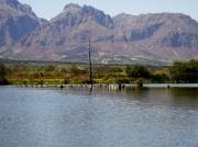 Paarl Bird Sanctuary near Cape Town, South Africa