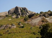 Paarl Mountain Nature Reserve, near Cape Town, South Africa