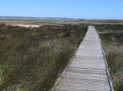 Geelbek Bird Hide walkway, Langebaan Lagoon, West Coast National Park, South Africa