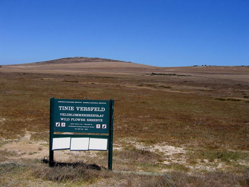 Tinie Versfeld Wild Flower Reserve on the Darling Farmlands, South Africa © 2006 Steve Ogden