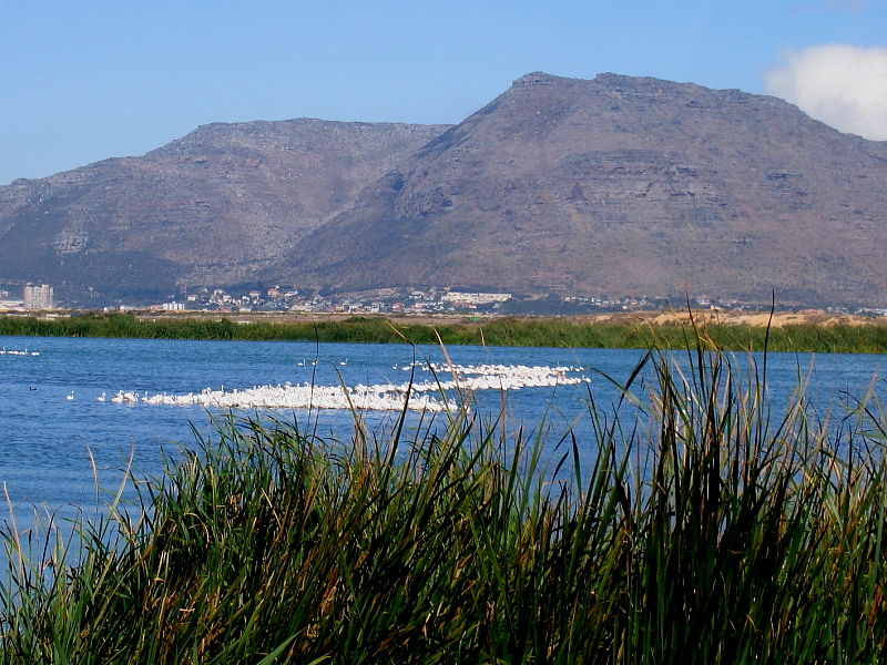 View from Strandfontein Sewage works to the Cape Peninsular, South Africa © Steve Ogden